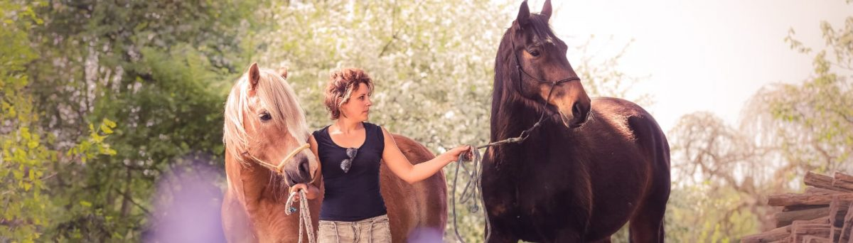 Paarden Problemen