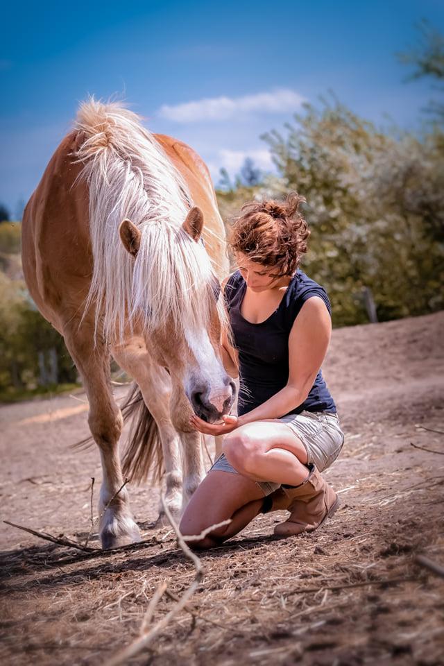 Ontspannen-paard