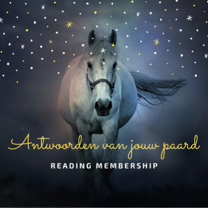 reading paard