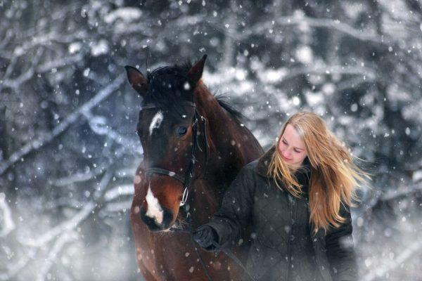 Paarden_problemen_winter